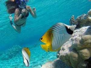 Crociere-Polinesia04