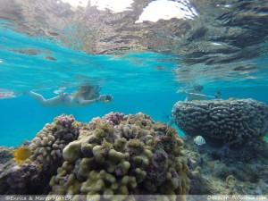 Crociere-Polinesia05